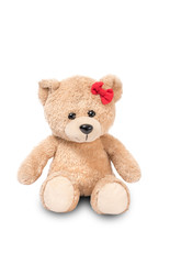 Cute boLovely cute bear isolated from white background.