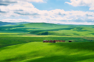 The summer grassland of Hulunbuir, China.