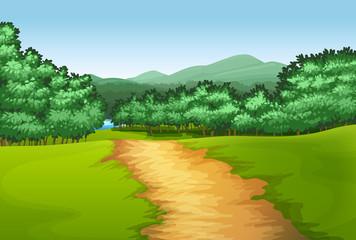 Path into the wood scene