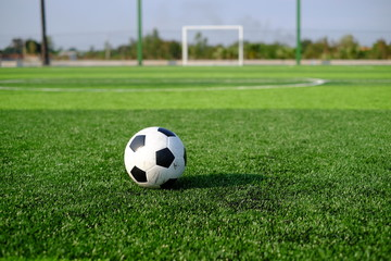 Soccer football on green grass field and goal post