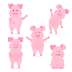 A set of cute piggy characters in different poses, sitting, standing, hand up and down. Funny pig. Chinese New Year