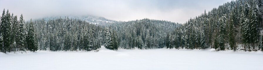 panorama of beautiful winter mountainous landscape