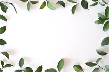 Leaf frame on white background.