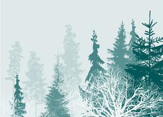 gren and grey forest top part isolated on light background