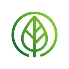 Fototapeta zielony liść wektor logo obraz
