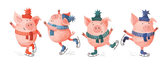 Funny cartoon pigs in colorful knitted hats and scarves. Set of skating pigs in various poses on a white background. Festive seasonal illustration.
