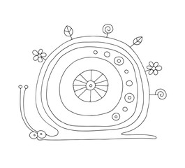 Vector hand drawn black and white illustration of isolated snail with decorative  elements, flowers, leaves. Cute childlike doodle style. Picture for coloring. Line drawing.