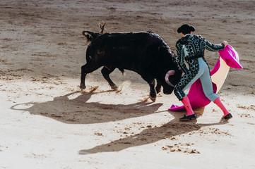 Foto op Canvas Stierenvechten Spanish bullfight. The enraged bull attacks the bullfighter