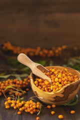 Natural, organic sea buckthorn berry in bowl on dark wooden background