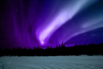 Photo sur Plexiglas Violet Aurora boreale Lapponia