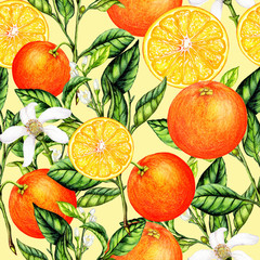 Seamless pattern of watercolor orange fruits