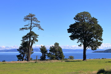 Lovely view on Lake Taupo