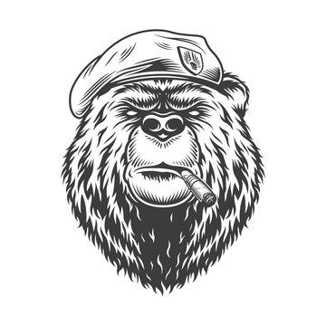 Navy seal bear head in beret