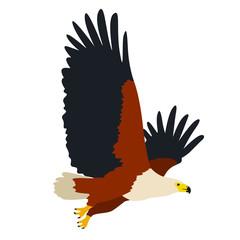 Un aigle royale en plein vol, emblème des États-Unis d'Amérique, façon logo