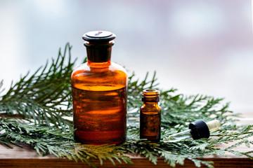 Thuja aroma essential oil