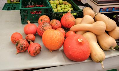 Decorative pumpkins for sale at central farmers' market Dolac. Gornji Grad. Zagreb