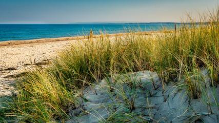 Dünenlandschaft an Rügens nördlicher Küste