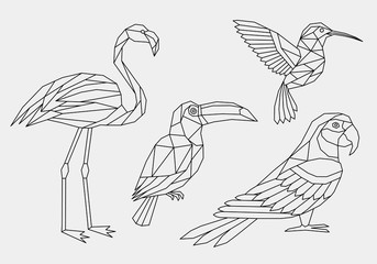 Set of abstract polygonal tropical birds. Linear geometric Hummingbird, Flamingo, parrot, Toucan. Vector illustration.