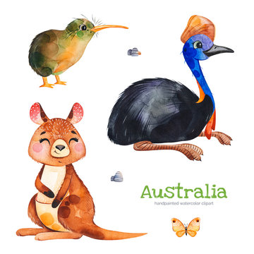 Australia watercolor set.Cute collection with cassowary,kiwi bird,kangaroo,butterfly,stones.Watercolor cute animals.Perfect for wallpaper,print,packaging,invitations,Baby shower,patterns,travel,logos