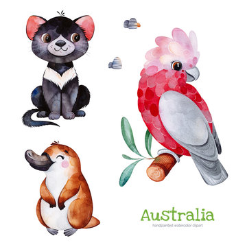 Australia watercolor set.Cute collection with Tasmanian devil,platypus,cockatoo,stones.Watercolor cute animals.Perfect for wallpaper,print,packaging,invitations,Baby shower,patterns,travel,logos etc