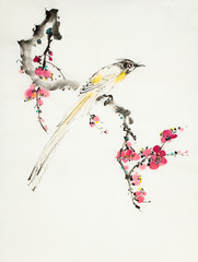 plum blossom branch and bird of paradise