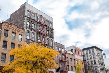 Colorful fall street scene on 2nd Avenue in the East Village of New York City