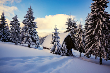 Old wood cabin, covered with snow
