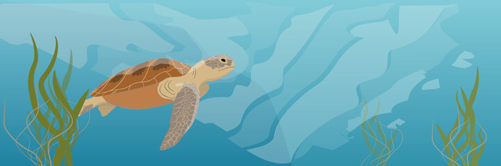 Tropical underwater realistic landscape. A large green sea turtle soup swims under water. Seaweed Vector illustration of a sea life