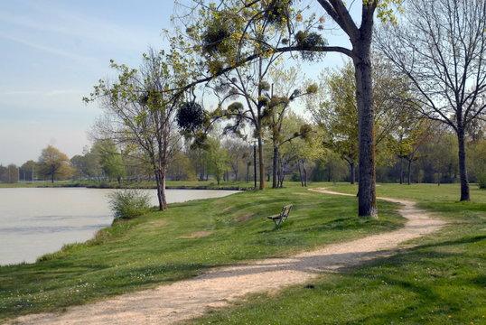 Ville de Salbris, Sologne, les bords de la Sauldre et le parc municipal, département du Loir et Cher, France