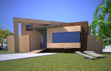 Wooden modern house