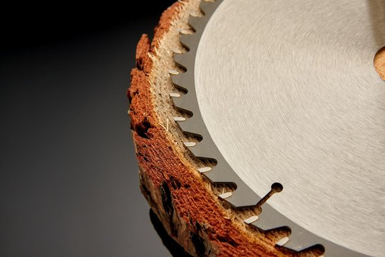 Mechanical circular saw, the best assistant when sawing wood in small and large quantities