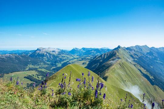 Riedergrat - vom Augstmatthorn zum Brienzer Rothorn, Berner Oberland / Schweiz