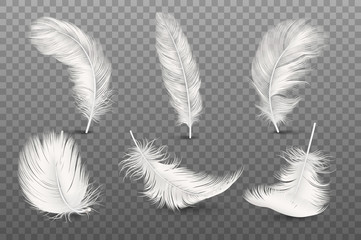 Vector 3d Realistic Different Falling White Fluffy Twirled Feather Set Closeup Isolated on Transparency Grid Background. Design Template, Clipart of Angel or Bird Detailed Feather in Various Shapes Fotoväggar