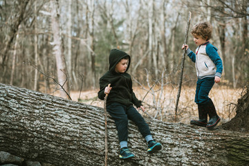 Full length of brothers playing with sticks on tree trunk in forest