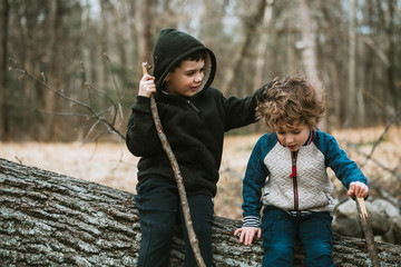 Playful brothers sitting on fallen tree in forest