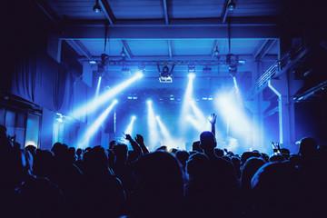 Silhouette people enjoying music at concert in nightclub