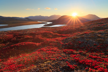 Photo sur Toile Marron Autumn landscape with mountain, valley and lagoon views. The slopes of the hill are covered with scarlet arctous. Amazing sunset with sun rays over the mountains. Mount Inakhpak, Chukotka, Russia.