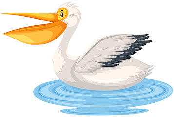 A pelican character in water