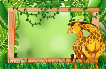 Giraffe on green nature frame