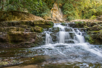 Beautiful stream waterfalls cascade over pretty green moss covered stones