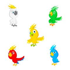 Vector illustration parrot cartoon