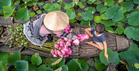 Papiers peints Fleur de lotus Top view of vietnamese boy playing with mom over the traditional wooden boat when padding for keep the pink lotus in the big lake at thap muoi, dong thap province, vietnam, culture and life concept