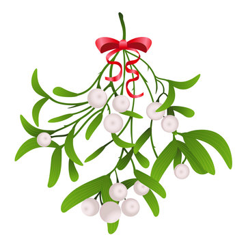 Hanging Misletoe Branch with Red Bow