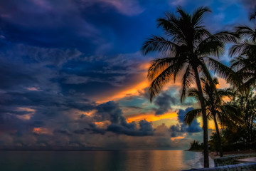 Colorful Sunset in the Bahamas with a palm tree in the foreground