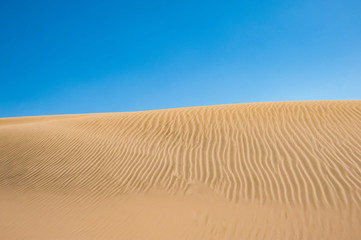 Beautiful landscape of  the Namibia  Desert , Africa