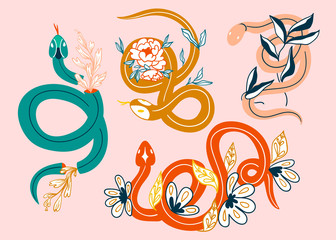 Snakes and flowers. Hand drawn colored vector set. Pink background. All elements are isolated