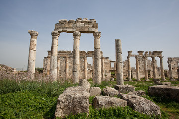 Ruins of the ancient dead city Apamea (Afamia). Syria before the war