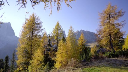 Wall Mural - Scenic footage of majestic Dolomites mountains in Italian Alps. Landscape shot of colorful trees and rocky mountains in the the Italian Dolomites in sunny autumn day.