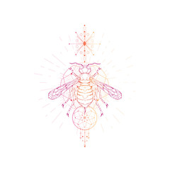 Vector illustration with hand drawn wasp and Sacred geometric symbol on white background. Abstract mystic sign.