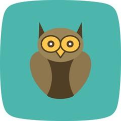Graduate Owl Vector Icon